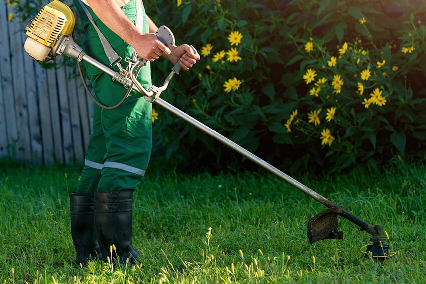sektor tereny zielone